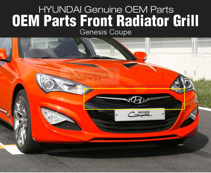 oem genesis parts front radiator hood grille for hyundai. Black Bedroom Furniture Sets. Home Design Ideas